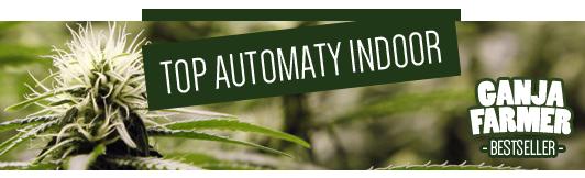 Nasiona marihuany automaty